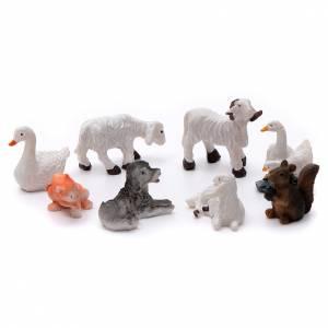 Animali presepe: Animali 8 pz resina dipinta per presepe 10 cm