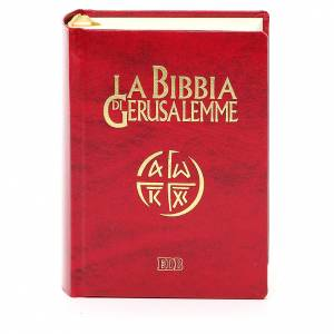 Bibbia Gerusalemme ed. per giovani s1