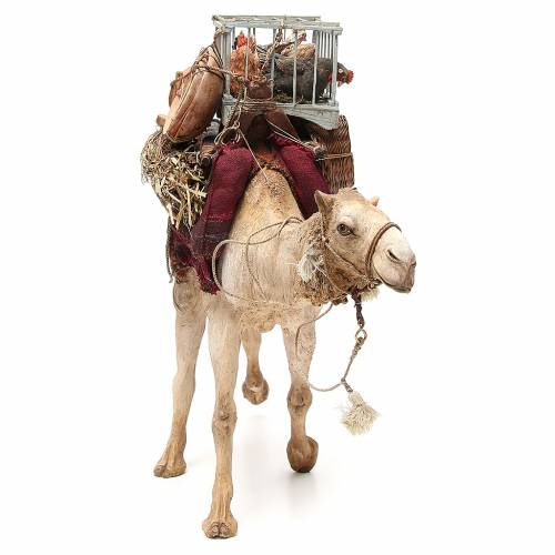 Camel with cages and hens 30cm Angela Tripi s4
