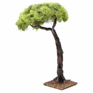 Chêne pour crèche 35cm s2