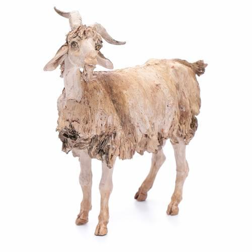 Chèvre 30 cm crèche Angela Tripi s4