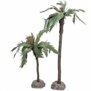 Muschio, licheni, piante, pavimentazioni: Coppia palme presepe Fontanini villaggio cm 12