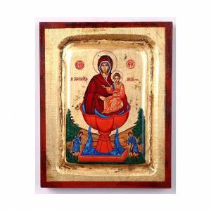 Icona Maria fonte della vita serigrafata s1