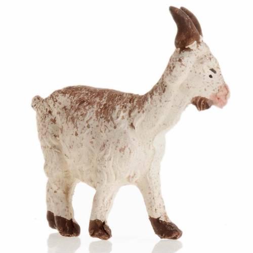 Neapolitan Nativity figurine, Little goat 8cm s2
