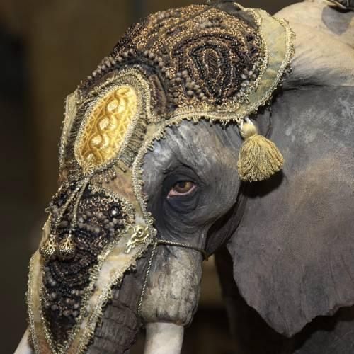 Roi Mage sur éléphant 30 cm Angela Tripi s3