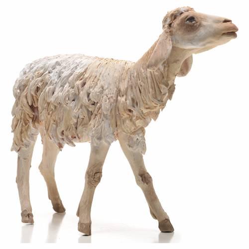 Sheep 30cm Angela Tripi s2