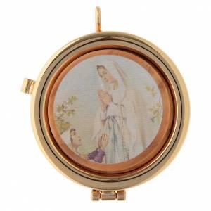 Teca placca ulivo Madonna di Lourdes diam. 6 cm s1