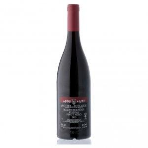 Vino Tinto Pinot Reserva DOC Abadía Muri Gries 2015 s2
