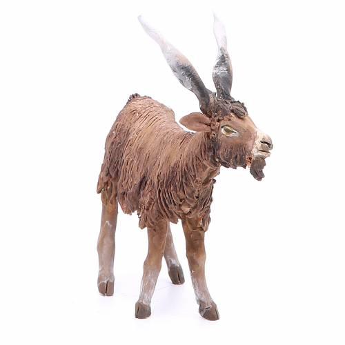 Chèvre 18cm crèche Angela Tripi s4