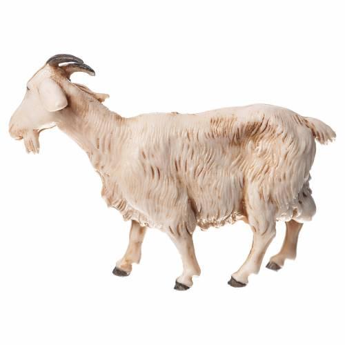 Chèvres crèche Moranduzzo 10cm, 3 pcs s4