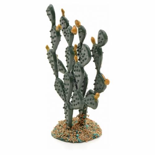Ficus Indica pesebre s2