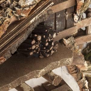 Krippe Hütten und Grotten: Hütte für Krippe Berghütte Stil 60x30x40cm
