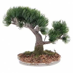 Japanese pine tree for nativity scene in PVC s2