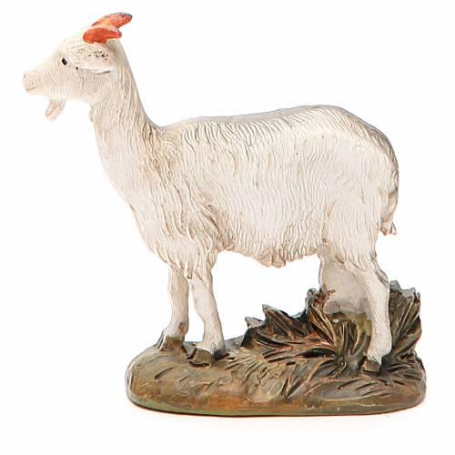 Little goat in painted resin, 12cm Martino Landi Nativity s2