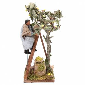 Neapolitan Nativity Scene: Moving man with ladder leaning on tree 12 cm Neapolitan nativity scene