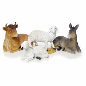 Nativity scene in resin, 12 figurines 63cm s5