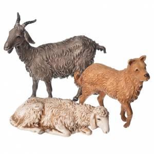 Ovejas, cabra y perro 6 figuras 13 cm Moranduzzo s3