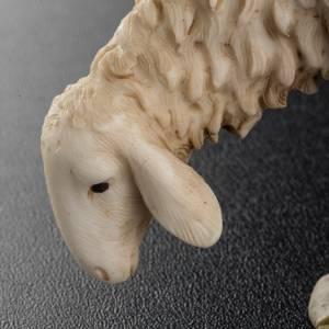 Krippentiere: Schaf für Weihnachtskrippe Landi 18 cm