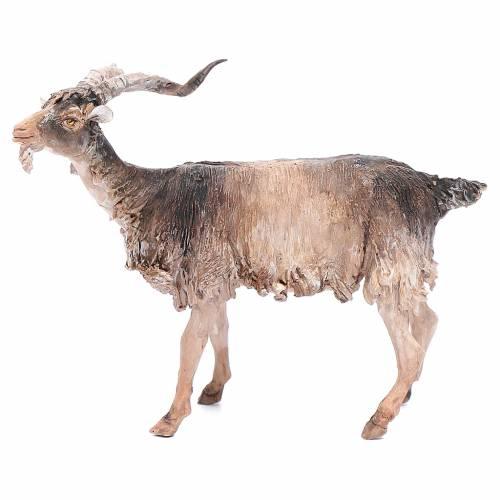 Chèvre 30cm crèche Angela Tripi s1