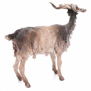 Chèvre 30cm crèche Angela Tripi s3