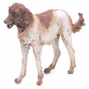 Dog 30cm Angela Tripi s1