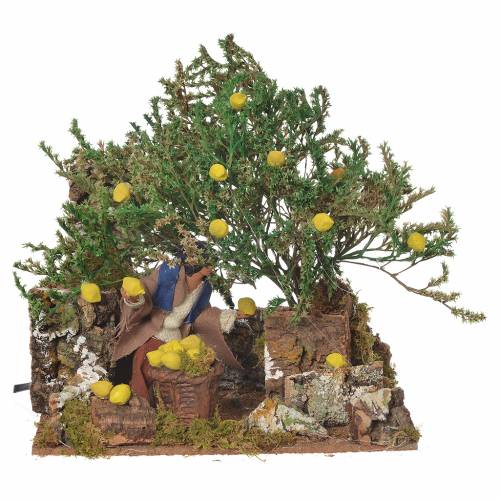 Man picking lemons, 12cm animated nativity s1