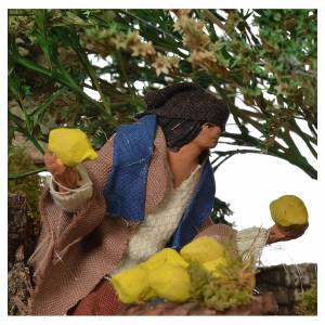 Man picking lemons, 12cm animated nativity s4