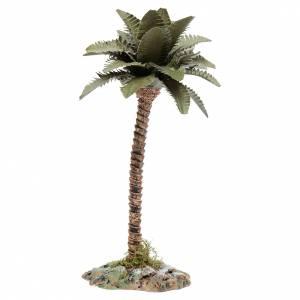 Muschio, licheni, piante, pavimentazioni: Palma con tronco in resina per presepe h.15 cm