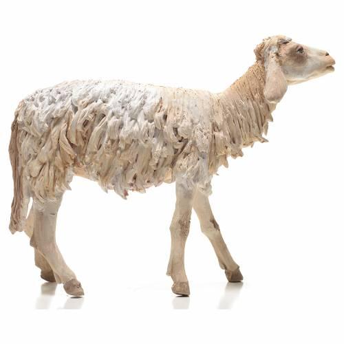 Sheep 30cm Angela Tripi s1