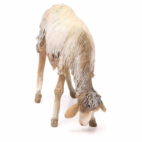 Mouton qui broute 30 cm crèche Angela Tripi s4