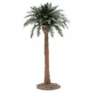 Muschio, licheni, piante, pavimentazioni: Palma singola presepe in resina h. reale 32 cm