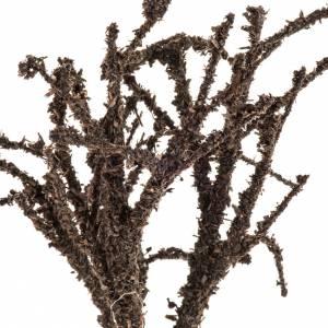 Árbol sin hojas H 15cm s2