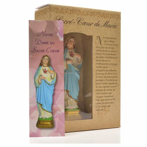 Sacred Heart of Mary 12cm with image and FRENCH PRAYER s3