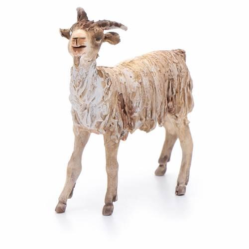 Terracotta goat 13cm Angela Tripi s4