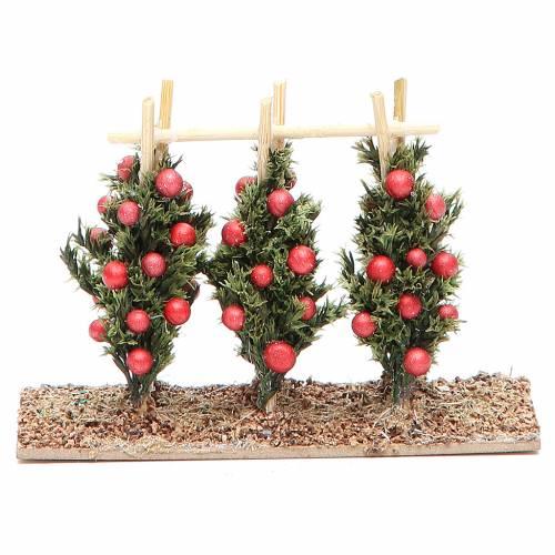 Tomato plant for nativity scene s1