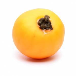 Zucca presepe fai da te pvc 2,5x2,5 cm s2