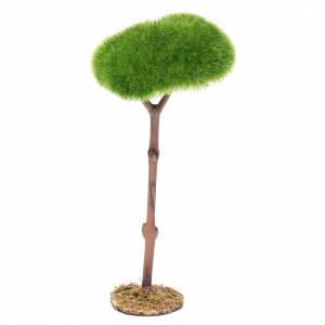 Muschio, licheni, piante, pavimentazioni: Albero del presepe h reale 18 cm