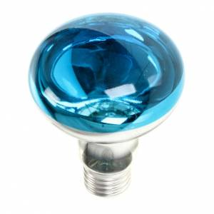 Luci presepe e lanterne: Lampada presepe E27 blu 220v 60w