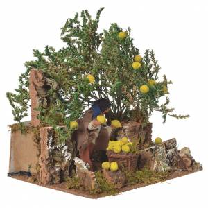 Man picking lemons, 12cm animated nativity s2