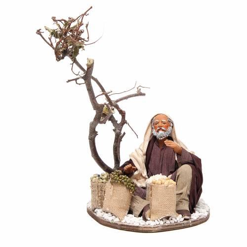 Man with seeds sacks and tree, Neapolitan nativity figurine 24cm s1