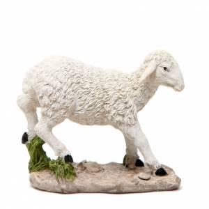 Animales para el pesebre: Oveja para pesebre  18 cm