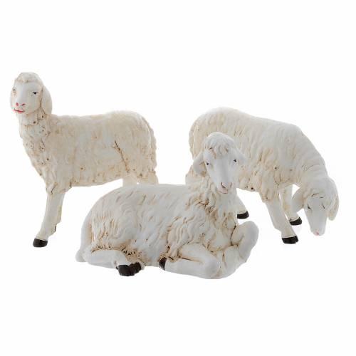 Pecorelle per presepe set da 3 pezzi 40-45 cm s1