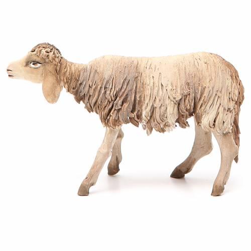 Sheep 18 cm, Angela Tripi Nativity figurine s2