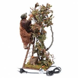 Uomo scala con albero movimento 24 cm presepe napoletano s4