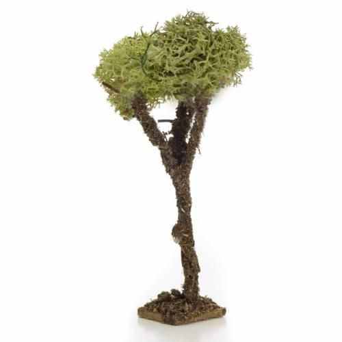 Albero presepe con lichene 10 cm s1
