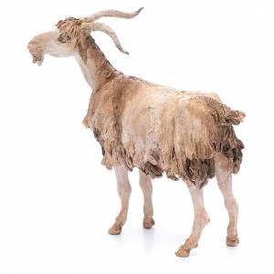 Chèvre 30 cm crèche Angela Tripi s2