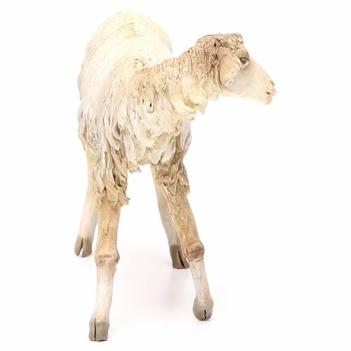 Mouton 30 cm crèche Angela Tripi s4