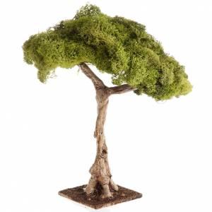 Nativity accessory, oak tree s4