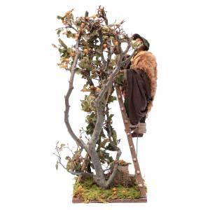 Uomo scala con albero movimento 24 cm presepe napoletano s6