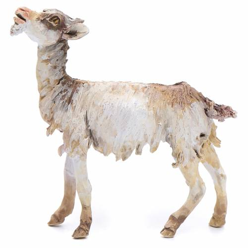 Young goat 18cm Angela Tripi s1